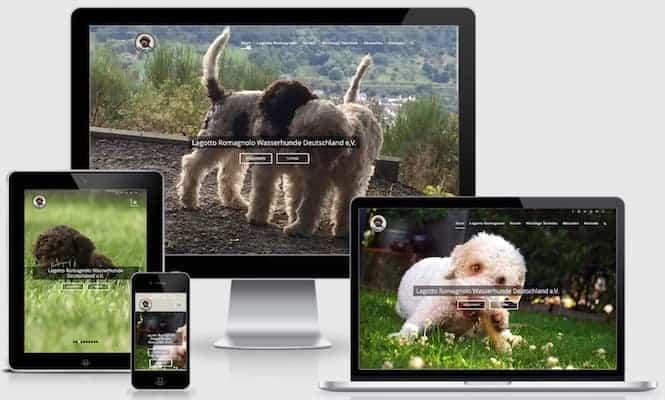 Homepage Lagotto Wasserhunde